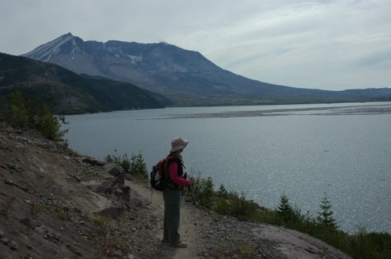Mt. St. Helens from shore of Spirit Lake