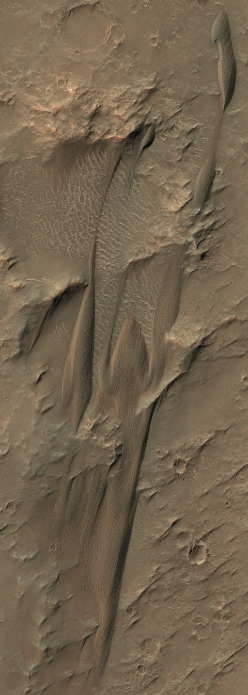 Wind-blown dunes