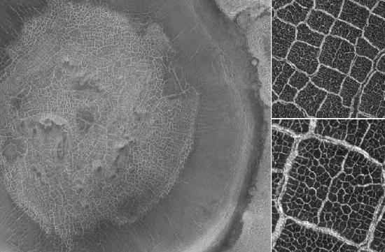 Crater floor polygons on Mars