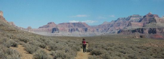 The Tonto Plateau