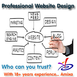 Amixa website design & hosting