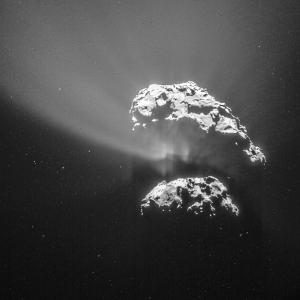 Looking into Comet 67P/C-G's plume