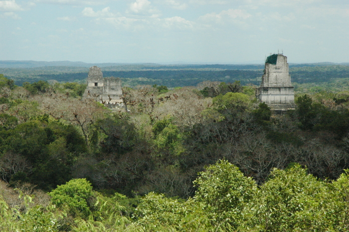 From the top of the Fourth Temple at Tikal