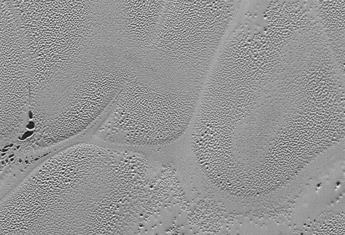 Pitted nitrogen ice plains on Pluto