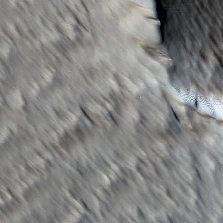 Wind scoured Martian surface