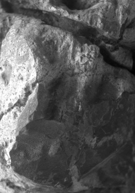close-up by Opportunity