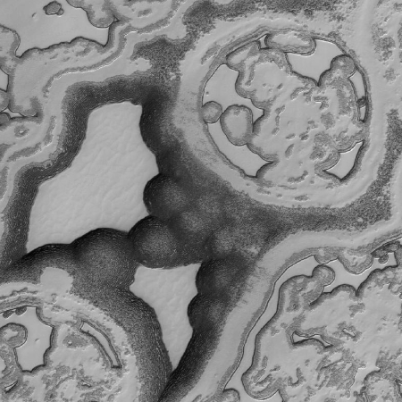 Mars's southern polar regions