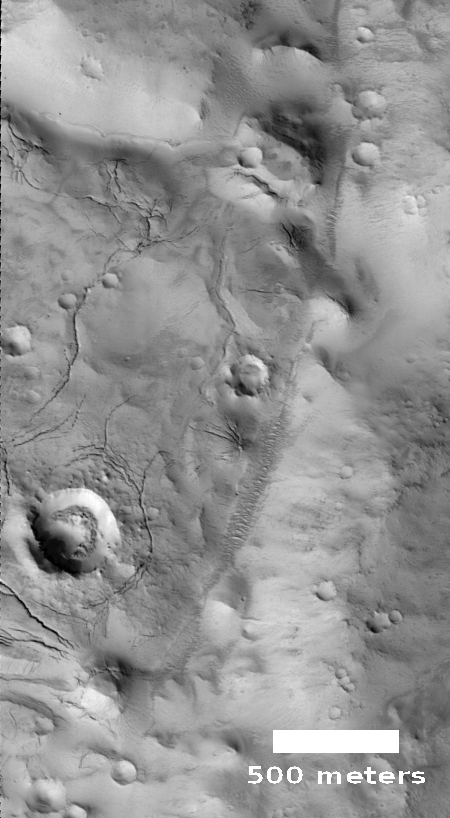 Mud cracks on Mars?
