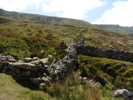 Stone walls on the flanks of Cader Edris