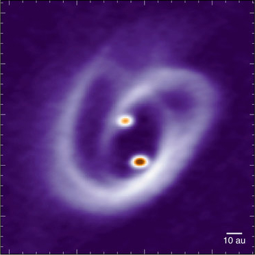 Baby binary stars dance in joint accretion disk