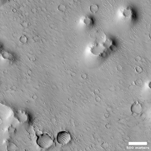Pedestal craters in Isidis Basin