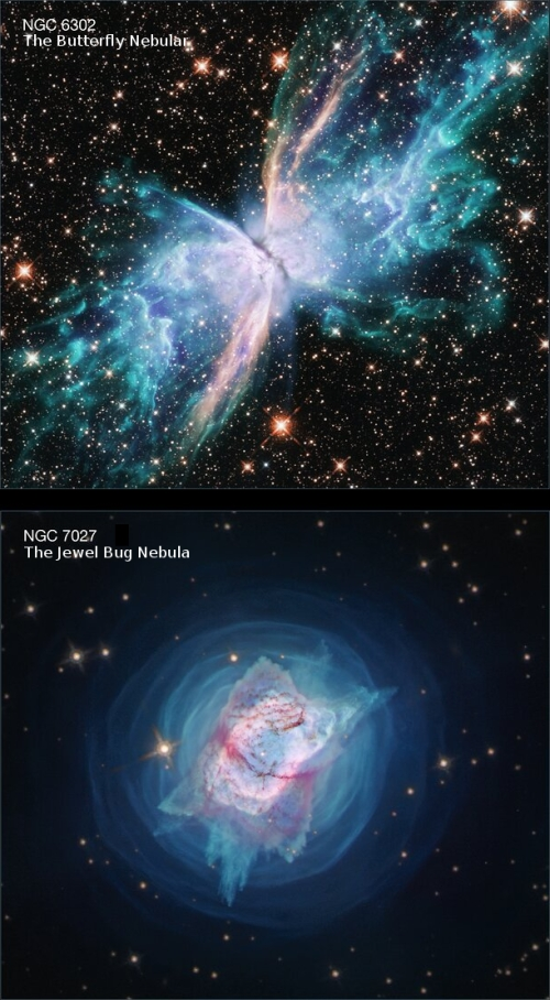 Hubble images of the Butterfly and Jewel Bug planetary nebulae