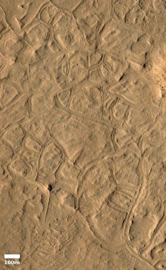 Lava polygons on Mars?