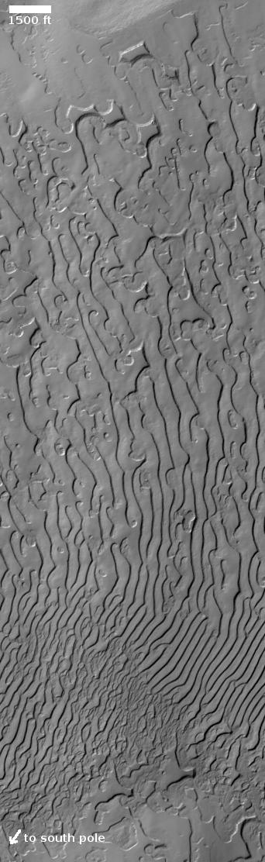 Fingerprint terrain on the Martian south pole icecap