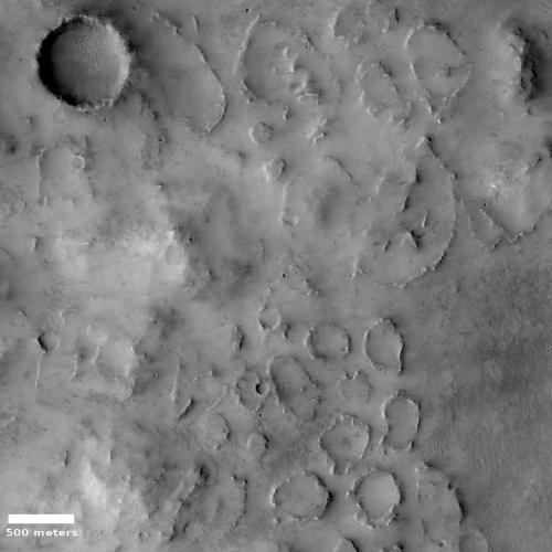 Knob field on Mars