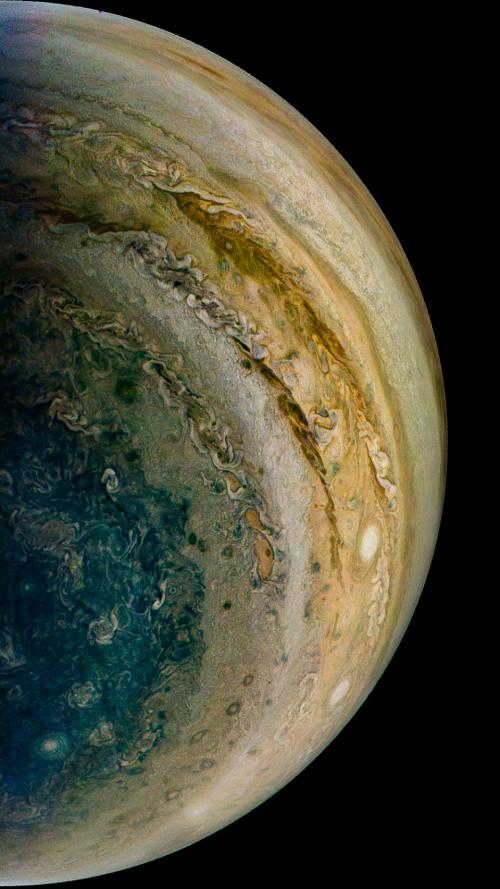 Jupiter's polar regions