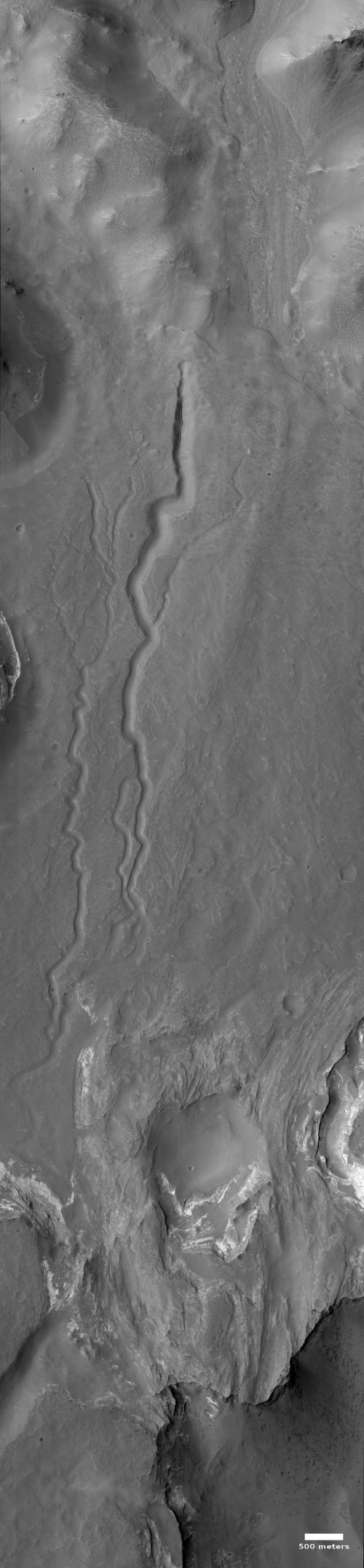 Channels in Terby Crater on Mars