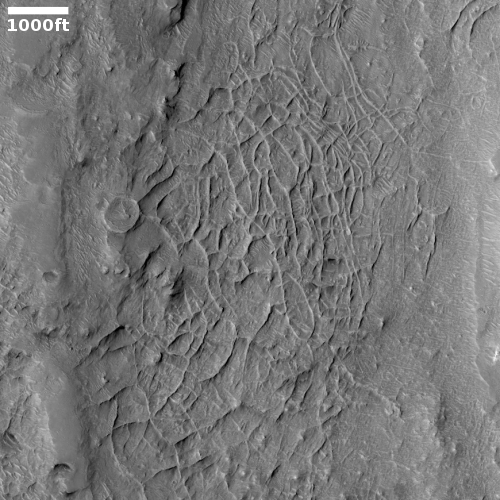 Boxwork in Robert Sharp Crater on Mars