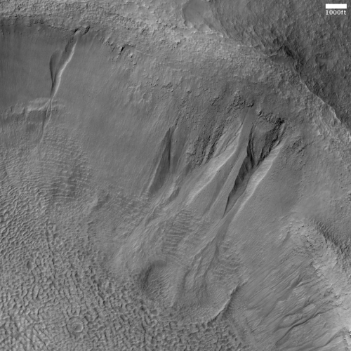 Gullies on crater interior wall