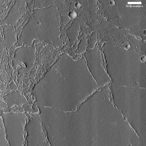 Wrinkle ridges in Utopia Planitia?