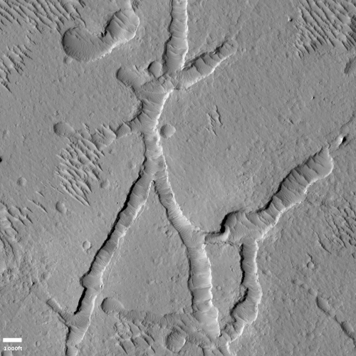 Closeup of fissures